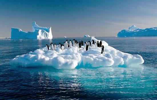 antarctica picture13a