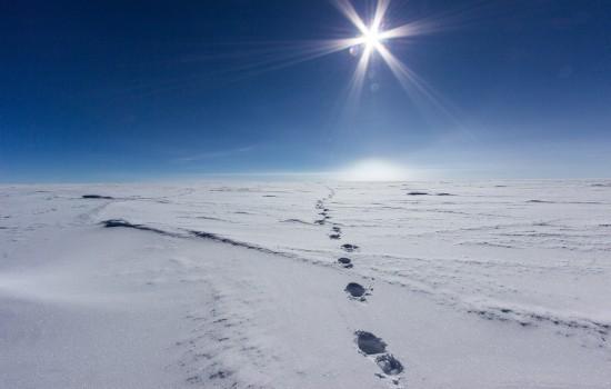 antarctica picture25
